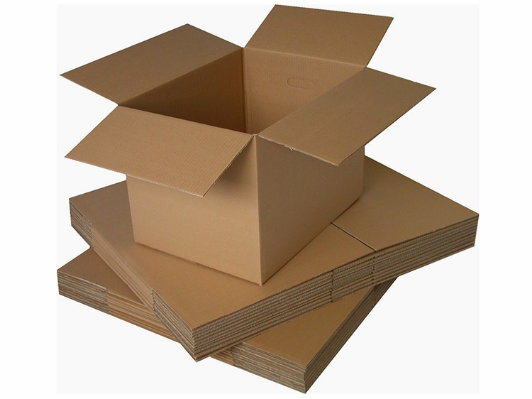 Bao bì carton dợn sóng 3 lớp